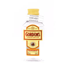 Gordon`s London Dry Gin Miniatur PET Produktbild